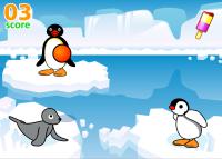 Pingu házení míčem