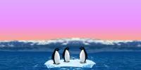 Turbo pingwiny
